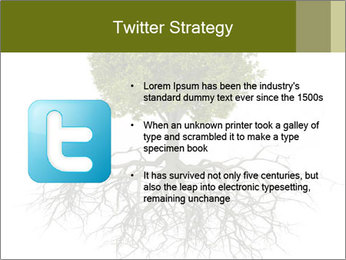 Tree with root PowerPoint Template - Slide 9