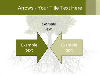 Tree with root PowerPoint Template - Slide 90