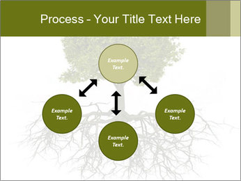 Tree with root PowerPoint Template - Slide 91