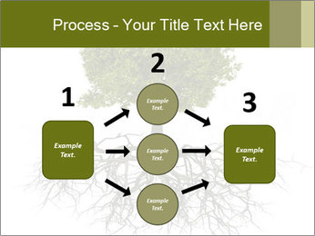 Tree with root PowerPoint Template - Slide 92