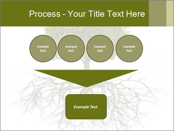 Tree with root PowerPoint Template - Slide 93