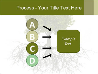 Tree with root PowerPoint Template - Slide 94