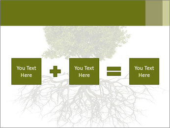 Tree with root PowerPoint Template - Slide 95