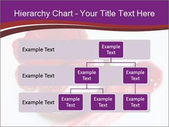 0000087842 PowerPoint Template - Slide 67