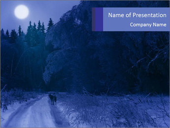 Winter night in the forest PowerPoint Template