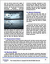 0000087877 Word Template - Page 4