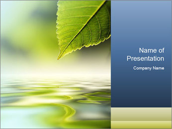 Green leaf reflecting in river water PowerPoint Template - Slide 1