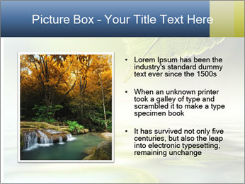 Green leaf reflecting in river water PowerPoint Template - Slide 13