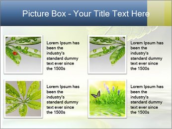 Green leaf reflecting in river water PowerPoint Template - Slide 14
