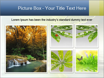 Green leaf reflecting in river water PowerPoint Template - Slide 19