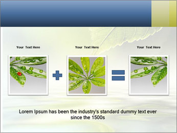 Green leaf reflecting in river water PowerPoint Template - Slide 22