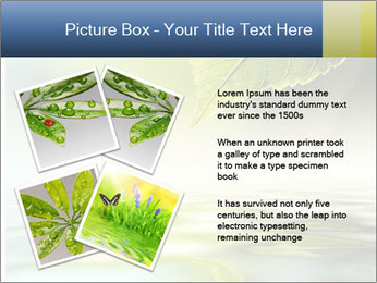 Green leaf reflecting in river water PowerPoint Template - Slide 23
