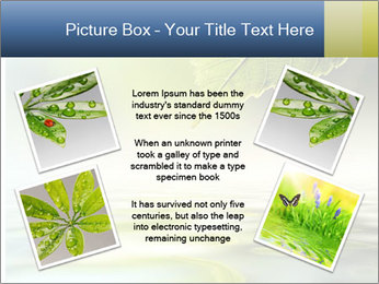 Green leaf reflecting in river water PowerPoint Template - Slide 24
