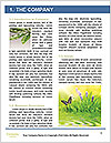 0000087881 Word Templates - Page 3