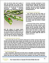 0000087881 Word Templates - Page 4