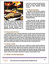 0000087885 Word Templates - Page 4