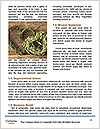 0000087890 Word Templates - Page 4