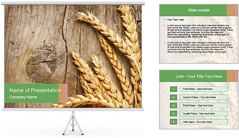 0000087898 PowerPoint Template