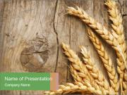 Wheat Ears PowerPoint Template