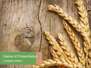 Wheat Ears PowerPoint Templates - Slide 1