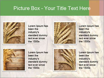 Wheat Ears PowerPoint Templates - Slide 14