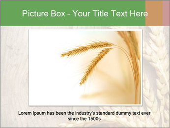 Wheat Ears PowerPoint Templates - Slide 16
