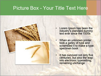 Wheat Ears PowerPoint Templates - Slide 20