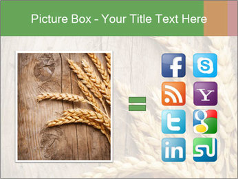 Wheat Ears PowerPoint Templates - Slide 21