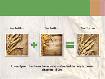 Wheat Ears PowerPoint Templates - Slide 22