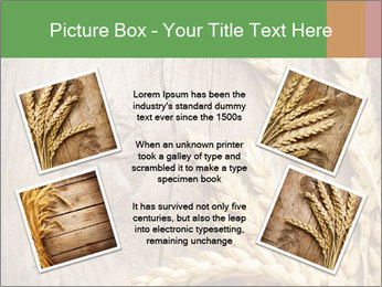 Wheat Ears PowerPoint Templates - Slide 24