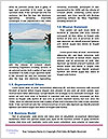 0000087900 Word Template - Page 4