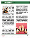 0000087902 Word Template - Page 3