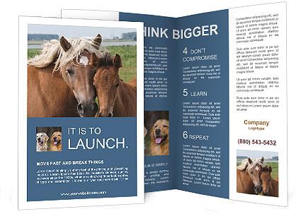 0000087903 Brochure Template