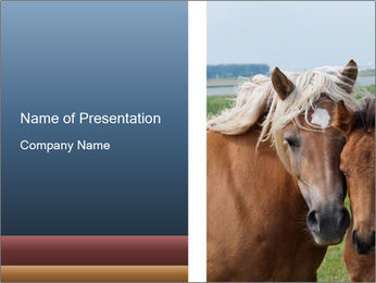 Dutch landscape PowerPoint Template
