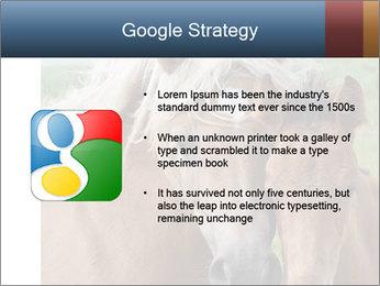 Dutch landscape PowerPoint Templates - Slide 10