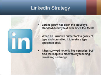 0000087903 PowerPoint Template - Slide 12