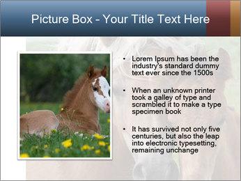 Dutch landscape PowerPoint Templates - Slide 13