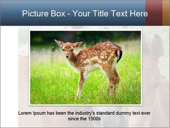 Dutch landscape PowerPoint Templates - Slide 16