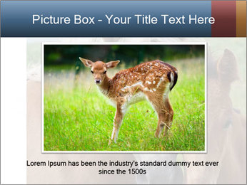 0000087903 PowerPoint Template - Slide 16