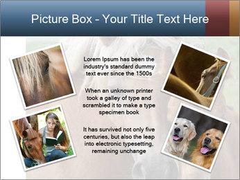 0000087903 PowerPoint Template - Slide 24