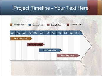 Dutch landscape PowerPoint Templates - Slide 25