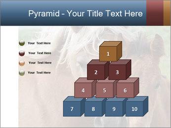 Dutch landscape PowerPoint Templates - Slide 31