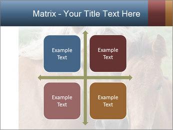 0000087903 PowerPoint Template - Slide 37