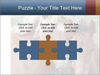 0000087903 PowerPoint Template - Slide 42