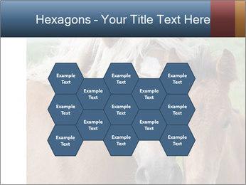 0000087903 PowerPoint Template - Slide 44