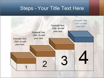 Dutch landscape PowerPoint Templates - Slide 64