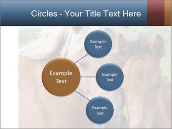 0000087903 PowerPoint Template - Slide 79
