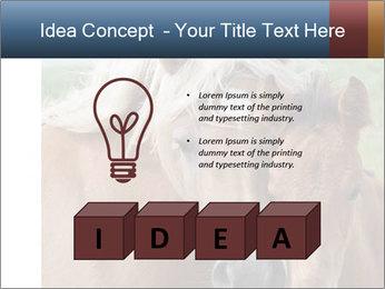 Dutch landscape PowerPoint Templates - Slide 80