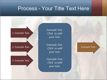 Dutch landscape PowerPoint Templates - Slide 85
