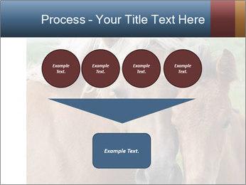 Dutch landscape PowerPoint Templates - Slide 93